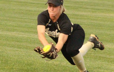 Ladycats fall short of state