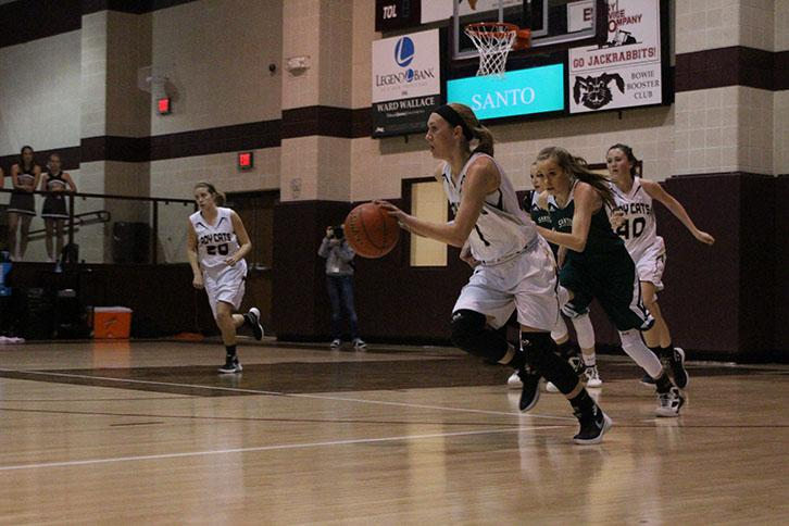 Senior+Taylor+Sims+pushes+the+ball+down+the+court+in+the+Ladycat%27s+bi-district+win+over+Santo+at+Bowie.