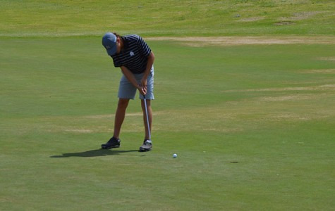 Golfer advances to state