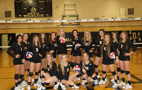 Ladycats on playoff road