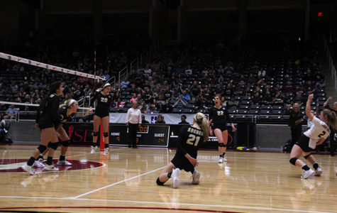 Ladycat volleyball returns to state
