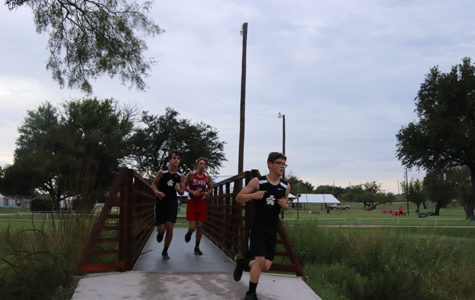 Cross country runners advance