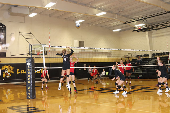 Sophomore Kayli Mahler spikes the ball against Electra.