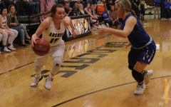 Ladycats miss playoff run for first time in six years