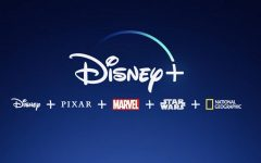 Disney+ service delivers a massive amount of content